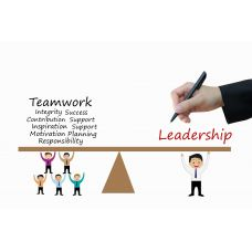 Managing people effectively - Leadership and influence