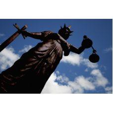 Criminal Litigation Course